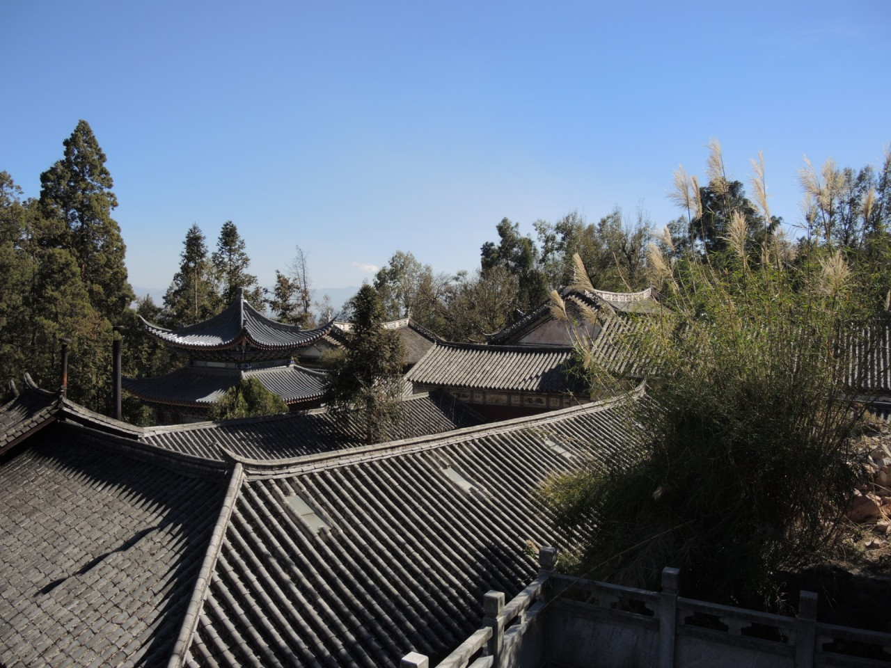 Wu Wei Si - Roofs