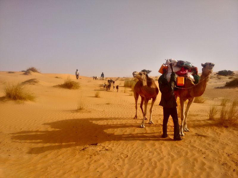 With nomads in the Sahara