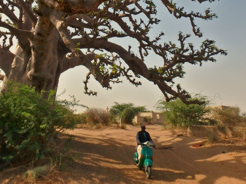 Traveling without money in Senegal